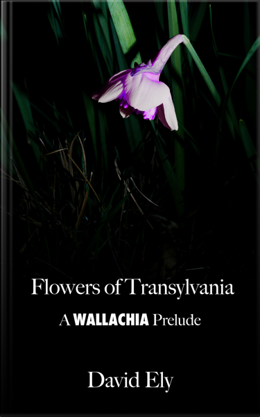 Flowers of Transylvnia Cover with Text
